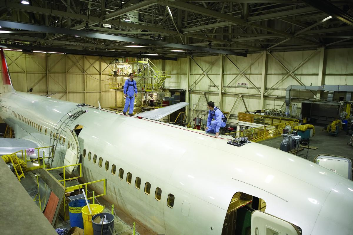 Aircraft Detail and Maintenance Fall Protection Systems